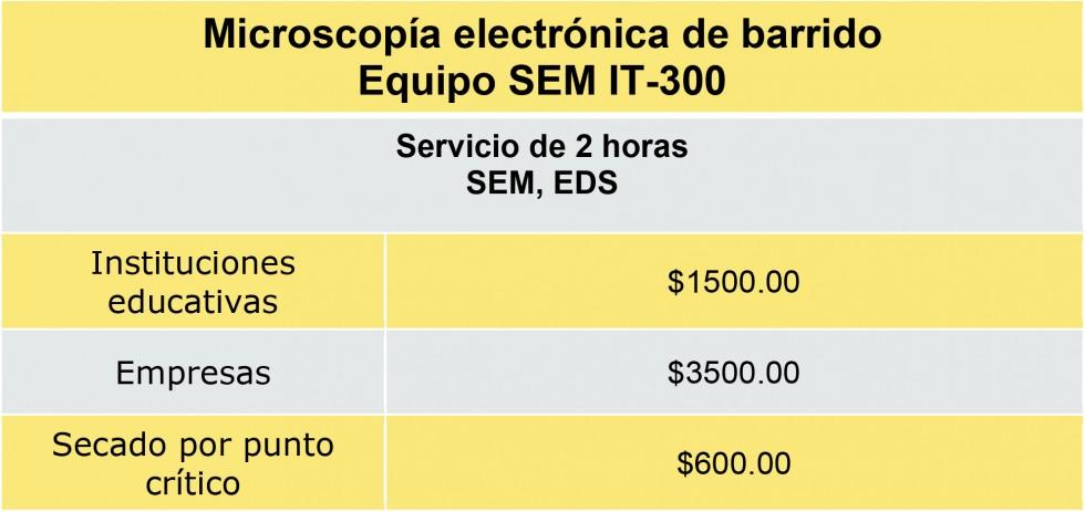 Microsoft Word - costos.docx