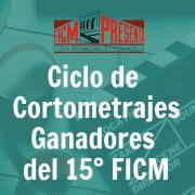 FICM-dstcd-01